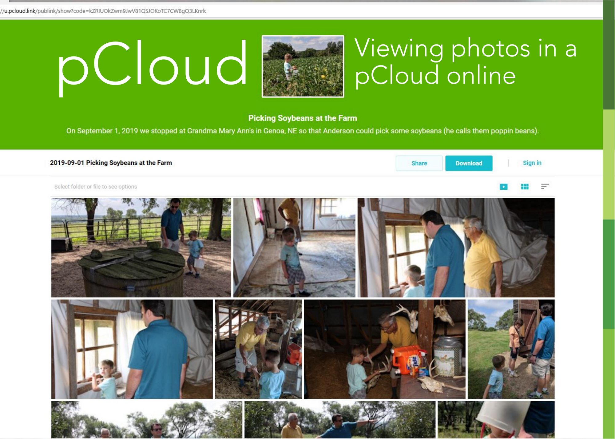 view of photos online in a pcloud folder